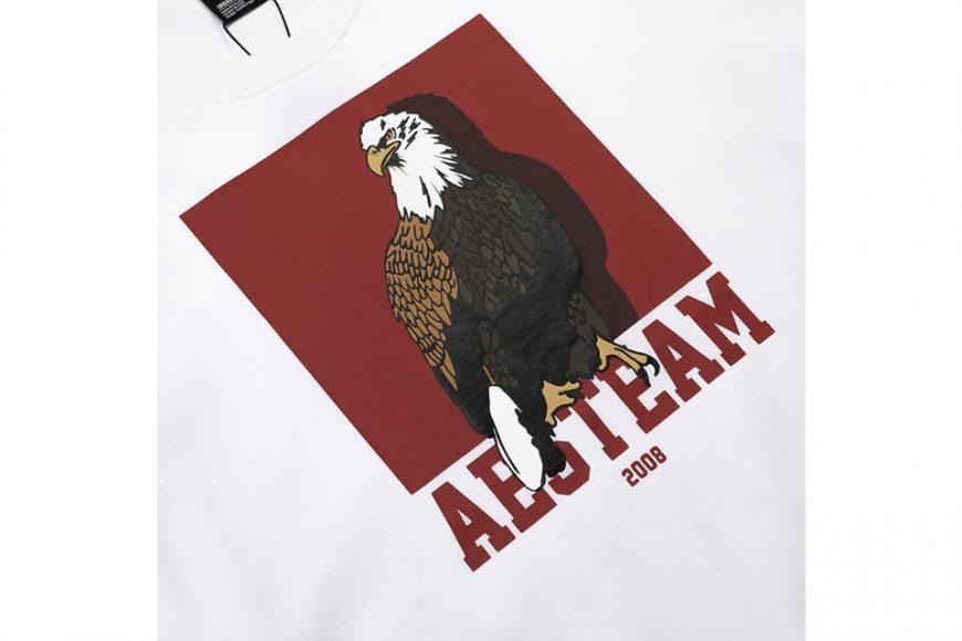 AES 18 SS Box Eagle Tee (6)