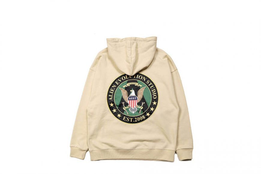 AES 18 AW AES Military Hoodie (6)