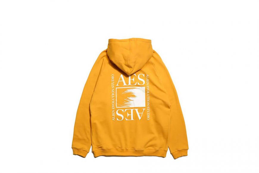 AES 19 SS Aes Logo Hoodie (6)
