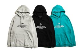 AES 19 SS AES Basic Logo hoodie (1)