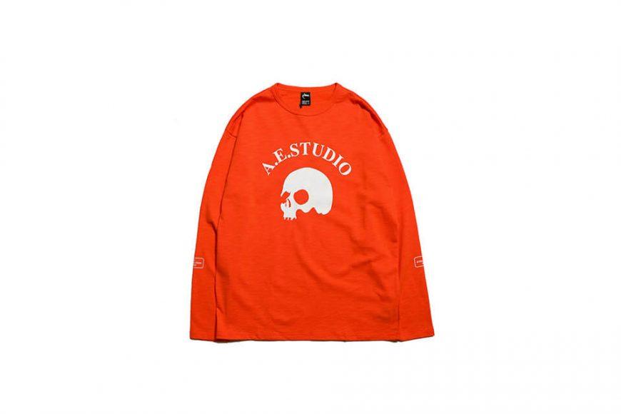 AES 19 SS Skull LS Tee (4)