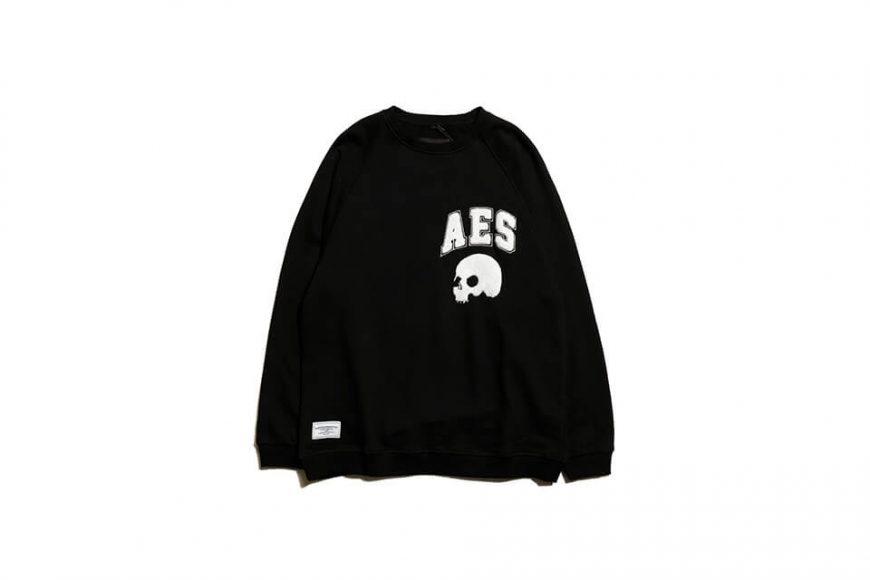 AES 19 SS Skull Sweatshirt (2)
