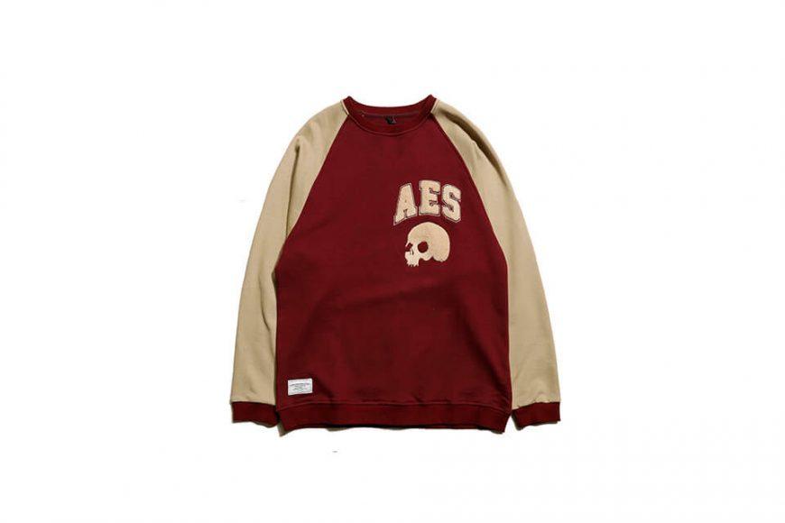 AES 19 SS Skull Sweatshirt (4)